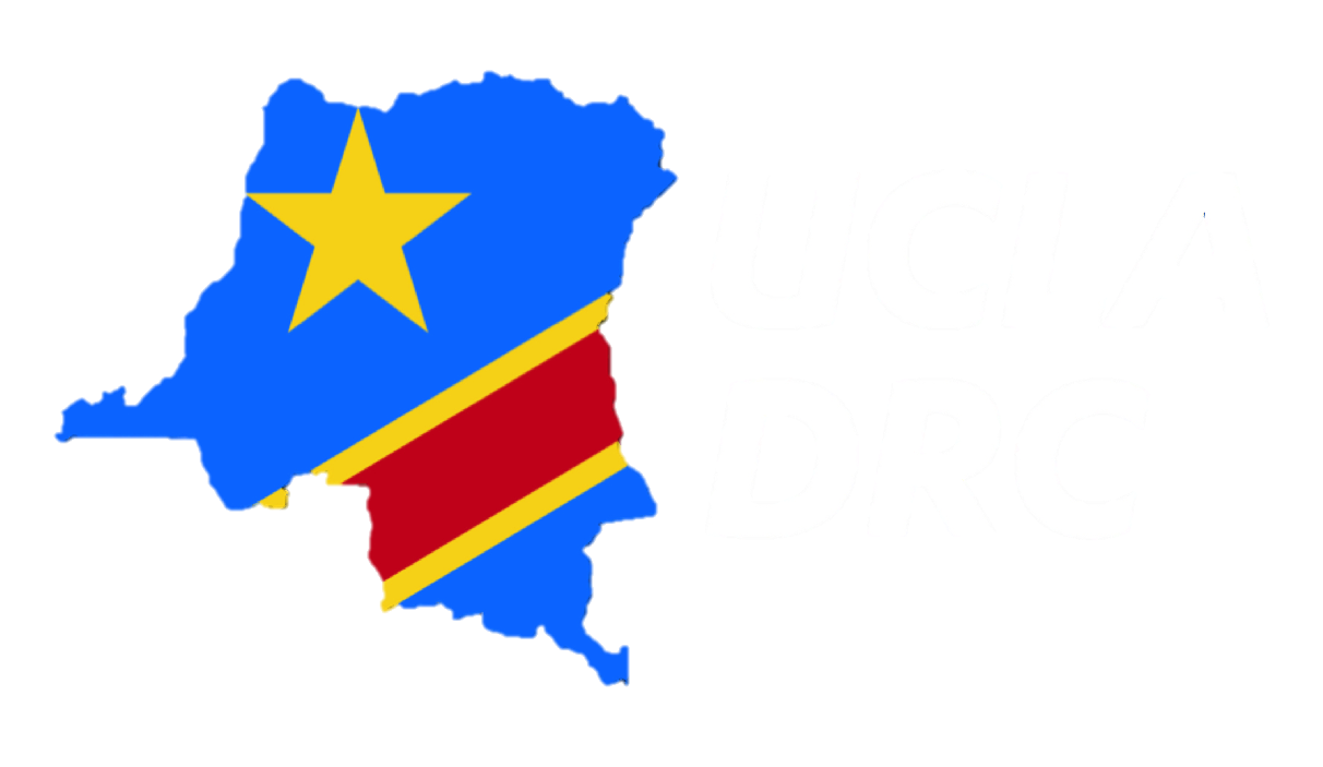 DRC: Another captured State